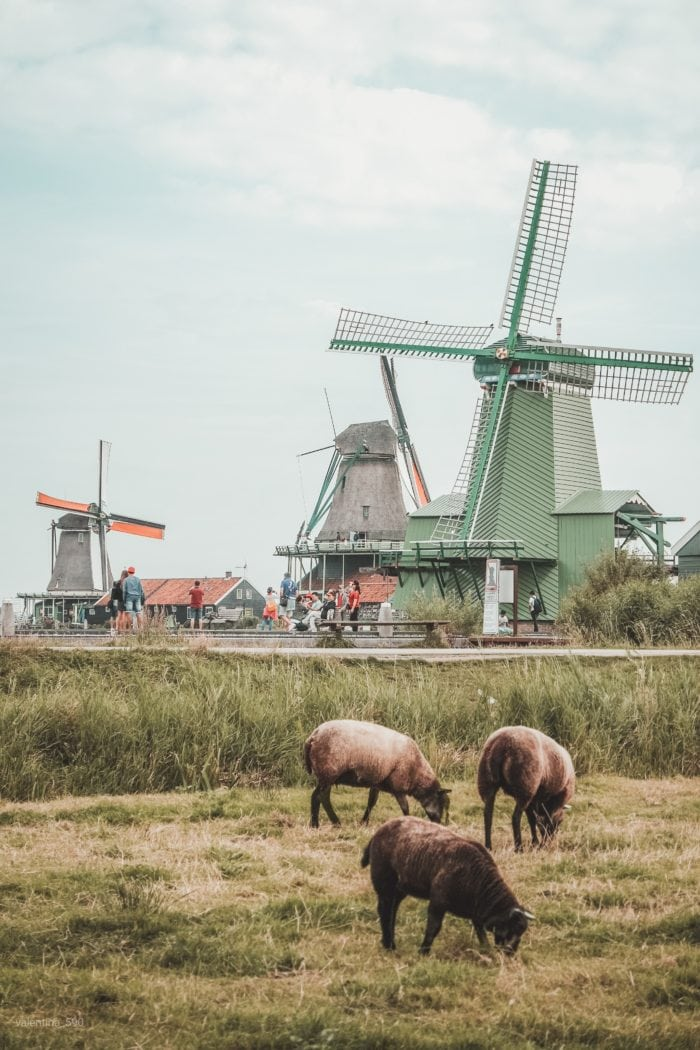The Ultimate Netherlands Travel Guide