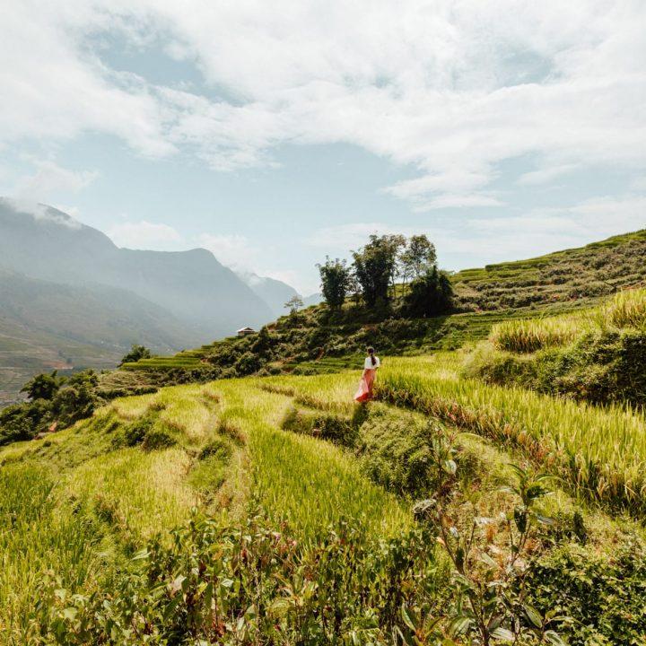 hiking in the sapa rice fields