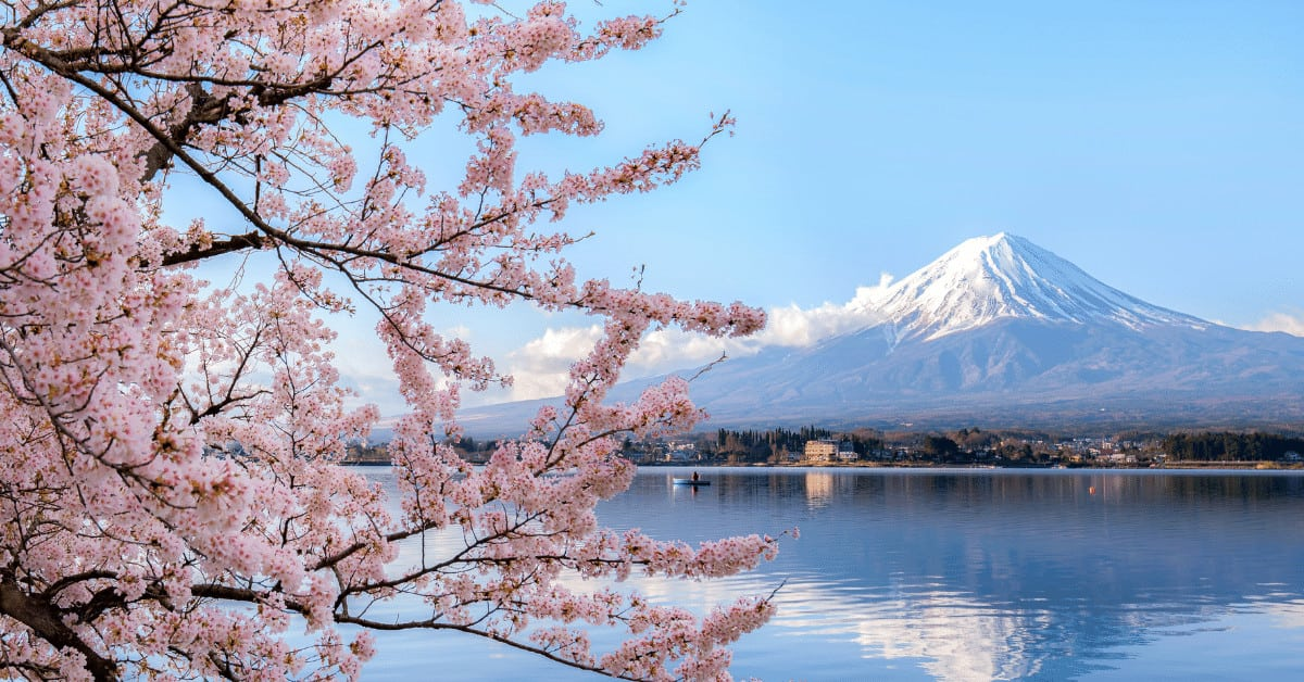 Japan is one of the places to visit - the cherry blossoms in this picture can't be missed.