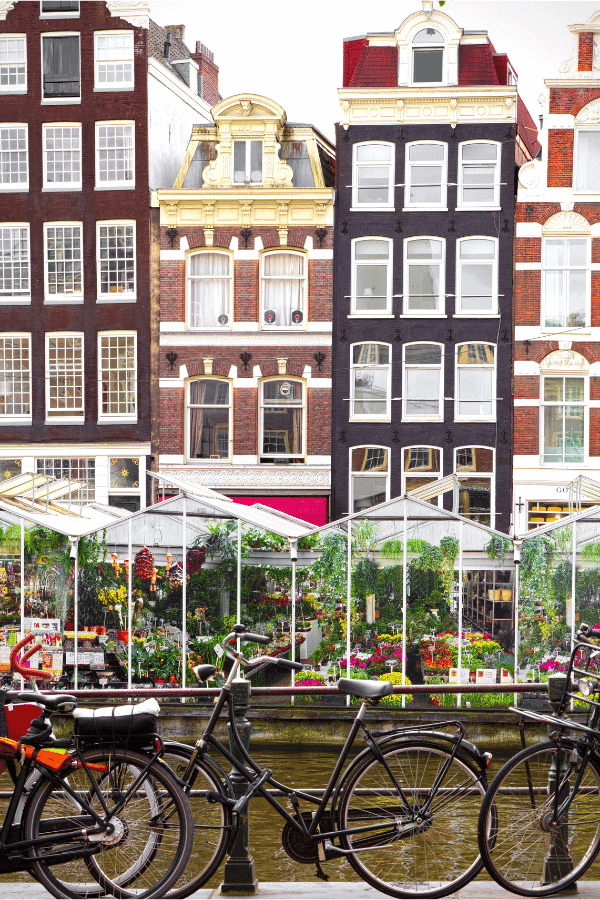 6 Ideas for a Staycation in Amsterdam