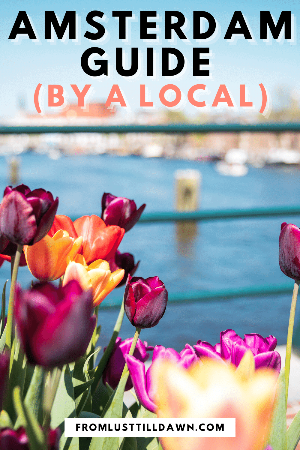"Pinterest Pin with an image of tulips and the water of a canal behind them. Text on the top of the picture that says ""Amsterdam Guide (by a local)""."