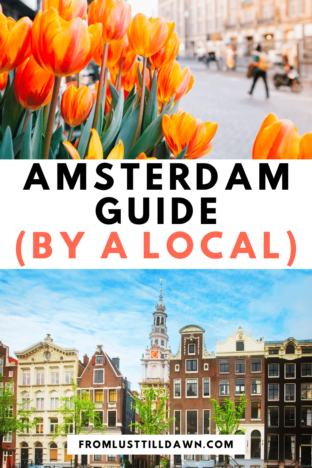 "Pinterest Pin with an image of tulips and another of a row of houses on an Amsterdam canal. Text in the middle of the picture that says ""Amsterdam Guide (by a local)""."