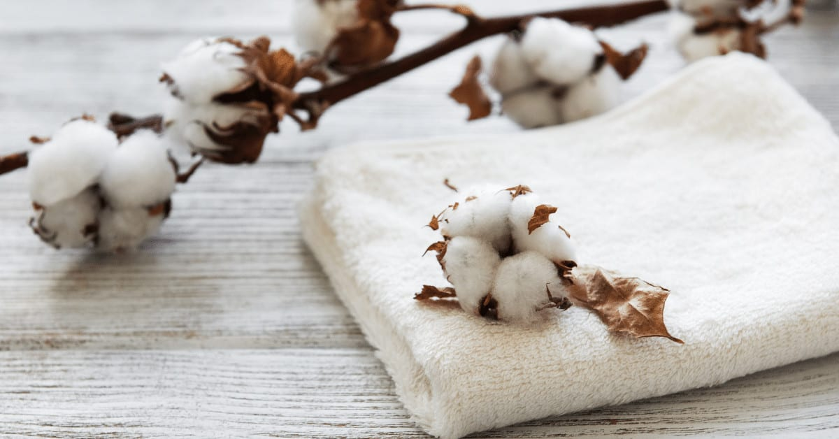 If you're expecting to visit hostels definitely bring a towel with you during your travels. It's a must-have item, especially if you find out a hotel doesn't offer free linens.